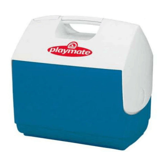 Lada frigorifica auto - Igloo Playmate